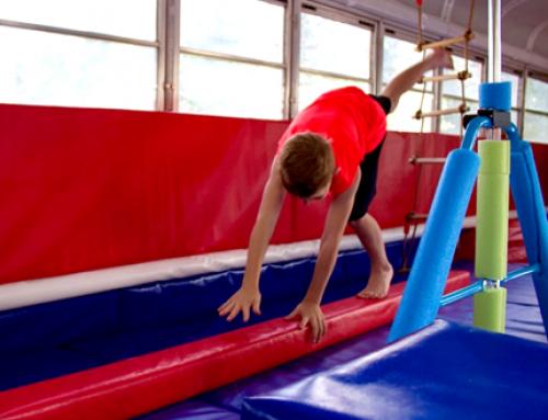 Why Gymnastics?